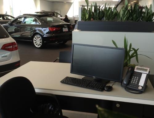 Audi Dealership – Marin